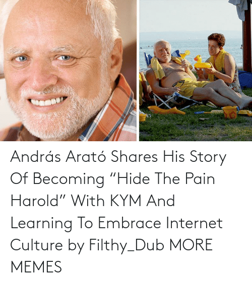 "Pain: András Arató Shares His Story Of Becoming ""Hide The Pain Harold"" With KYM And Learning To Embrace Internet Culture by Filthy_Dub MORE MEMES"