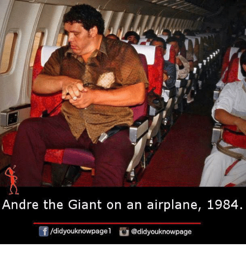 André the Giant, Memes, and Airplane: Andre the Giant on an airplane, 1984  @didyouknowpage