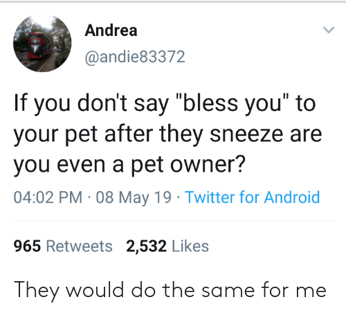 """Andrea: Andrea  @andie83372  If you don't say """"bless you"""" to  your pet after they sneeze are  you even a pet owner?  04:02 PM 08 May 19 Twitter for Android  965 Retweets 2,532 Likes They would do the same for me"""