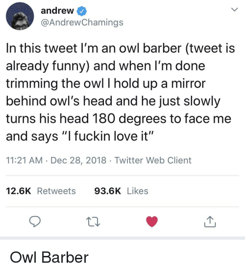 """Barber, Funny, and Head: andrew  @AndrewChamings  In this tweet I'm an owl barber (tweet is  already funny) and when l'm done  trimming the owl I hold up a mirror  behind owl's head and he just slowly  turns his head 180 degrees to face me  and says """"l fuckin love it""""  11:21 AM Dec 28, 2018 Twitter Web Client  12.6K Retweets 93.6K Likes Owl Barber"""