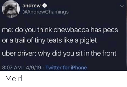 Chewbacca, Iphone, and Twitter: andrew  @AndrewChamings  me: do you think chewbacca has pecs  or a trail of tiny teats like a piglet  uber driver: why did you sit in the front  8:07 AM 4/9/19 Twitter for iPhone Meirl