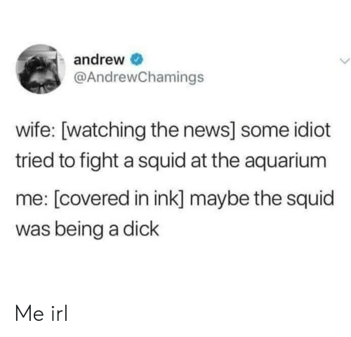 News, Aquarium, and Dick: andrew  @AndrewChamings  wife: [watching the news] some idiot  tried to fight a squid at the aquarium  me: [covered in ink] maybe the squid  was being a dick Me irl