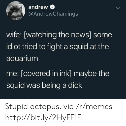 Octopus: andrew  @AndrewChamings  wife: [watching the news] some  idiot tried to fight a squid at the  aquarium  me: [covered in ink] maybe the  squid was being a dick Stupid octopus. via /r/memes http://bit.ly/2HyFF1E