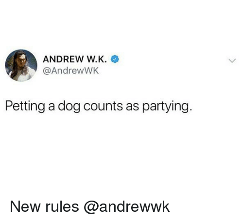 Girl Memes, Dog, and New: ANDREW W.K.  @AndrewWK  Petting a dog counts as partying. New rules @andrewwk