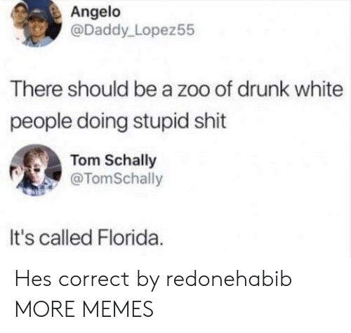 Dank, Drunk, and Memes: Angelo  @Daddy Lopez55  There should be a zoo of drunk white  people doing stupid shit  Tom Schally  @TomSchally  It's called Florida Hes correct by redonehabib MORE MEMES
