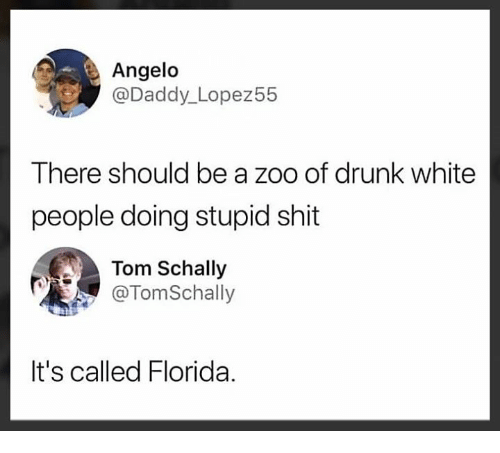 Drunk, Memes, and Shit: Angelo  @Daddy_Lopez55  There should be a zoo of drunk white  people doing stupid shit  Tom Schally  @TomSchally  It's called Florida.