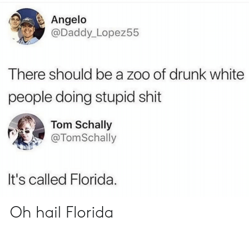 Drunk, Shit, and White People: Angelo  @Daddy_Lopez55  There should be a zoo of drunk white  people doing stupid shit  Tom Schally  @TomSchally  It's called Florida. Oh hail Florida