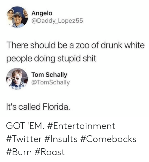Insults: Angelo  @Daddy_Lopez55  There should be a zoo of drunk white  people doing stupid shit  Tom Schally  @TomSchally  It's called Florida GOT 'EM. #Entertainment #Twitter #Insults #Comebacks #Burn #Roast