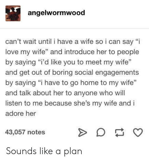 "Love, Home, and Wife: angelwormwood  can't wait until i have a wife soi can say ""i  love my wife"" and introduce her to people  by saying ""i'd like you to meet my wife""  and get out of boring social engagements  by saying ""i have to go home to my wife""  and talk about her to anyone who will  listen to me because she's my wife and i  adore her  43,057 notes  A Sounds like a plan"