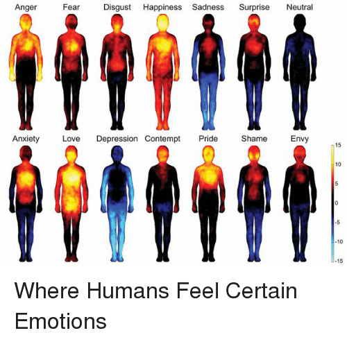Contempting: Anger  Fear  Disgust  Happiness Sadness  Surprise  Neutra  Anxiety  Love  Depression Contempt  Pride  Shame  Envy  15  10  10  15 Where Humans Feel Certain Emotions