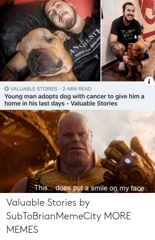 Dank, England, and Memes: ANGHEST  NORTH ES  VALUABLE STORIES 2-MIN READ  Young man adopts dog with cancer to give him a  home in his last days - Valuable Stories  This... does put a smile on my face.  ENGLAND Valuable Stories by SubToBrianMemeCity MORE MEMES