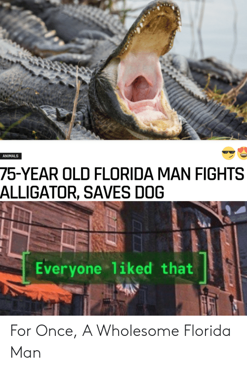 Animals, Florida Man, and Alligator: ANIMALS  75-YEAR OLD FLORIDA MAN FIGHTS  ALLIGATOR, SAVES DOG  Everyone 1iked that For Once, A Wholesome Florida Man
