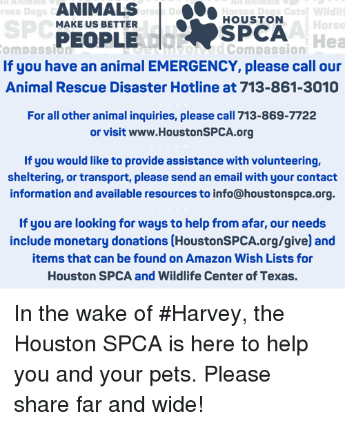 Amazon, Animals, and Cats: ANIMALS |  PEOPLE  ses Dogs  Dogs Cats Wildli  HOUSTON  SPCA  dCompassion  SPC  MAKE US BETTER  Horse  Hea  omDaSsio  8  If you have an animal EMERGENCY, please call our  Animal Rescue Disaster Hotline at 713-861-3010  For all other animal inquiries, please call 713-869-7722  or visit www.HoustonSPCA.org  If you would like to provide assistance with volunteering,  sheltering, or transport, please send an email with your contact  information and available resources to info@houstonspca.org.  If you are looking for ways to help from afar, our needs  include monetary donations (HoustonSPCA.org/give) and  items that can be found on Amazon Wish Lists for  Houston SPCA and Wildlife Center of Texas. In the wake of #Harvey, the Houston SPCA is here to help you and your pets. Please share far and wide!