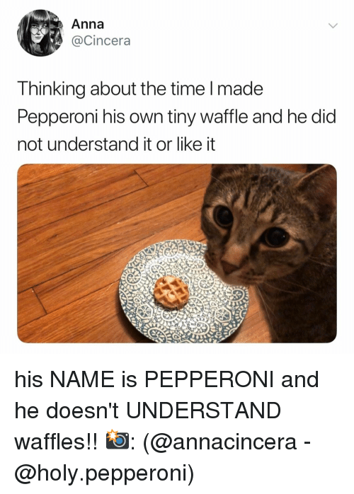Anna, Time, and Relatable: Anna  @Cincera  Thinking about the time l made  Pepperoni his own tiny waffle and he dia  not understand it or like it his NAME is PEPPERONI and he doesn't UNDERSTAND waffles!! 📸: (@annacincera - @holy.pepperoni)