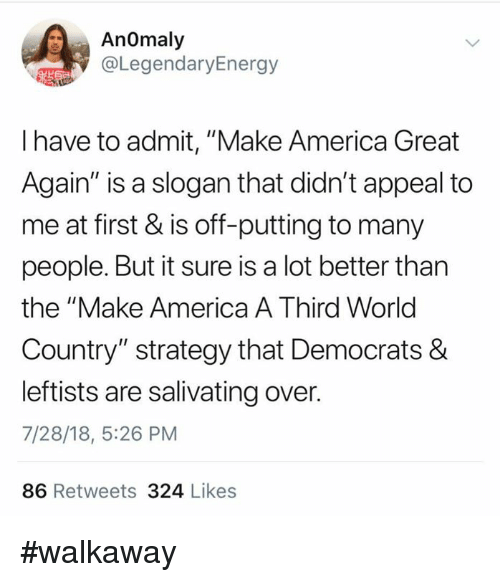 """America, Memes, and World: AnOmaly  @LegendaryEnergy  I have to admit, """"Make America Great  Again"""" is a slogan that didn't appeal to  me at first & is off-putting to many  people. But it sure is a lot better than  the """"Make America A Third World  Country"""" strategy that Democrats &  leftists are salivating over.  7/28/18, 5:26 PM  86 Retweets 324 Likes #walkaway"""