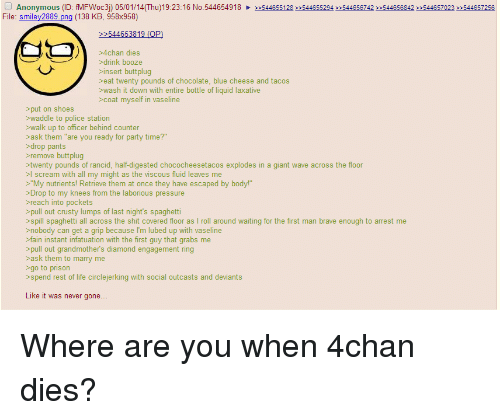 """4chan, Life, and Party: Anonymous (ID:  fMFWoc3) 05/01/14(Thu) 19:23:16 No.54465491822544655128 2:544655294 2.544656742 2544656842 22544657023 22544657256  e: smiley2889 ong (138 KB, 958x958)  >4chan dies  >drink booze  insert buttplug  >eat twenty pounds of chocolate, blue cheese and tacos  >wash it down with entire bottle of liquid laxative  >coat myself in vaseline  >put on shoes  >waddle to police station  >walk up to officer behind counter  ask them """"are you ready for party time?""""  >drop pants  remove buttplug  twenty pounds of rancid, half-digested chococheesetacos explodes in a giant wave across the floor  >l scream with all my might as the viscous fluid leaves me  >""""My nutrients! Retrieve them at once they have escaped by body!""""  >Drop to my knees from the laborious pressure  reach into pockets  pull out crusty lumps of last night's spaghetti  >spill spaghetti all across the shit covered floor as I roll around waiting for the first man brave enough to arrest me  >nobody can get a grip because I'm lubed up with vaseline  >fain instant infatuation with the first guy that grabs me  pull out grandmother's diamond engagement ring  >ask them to marry me  go to prison  >spend rest of life circlejerking with social outcasts and deviants  Like it was never gone... Where are you when 4chan dies?"""