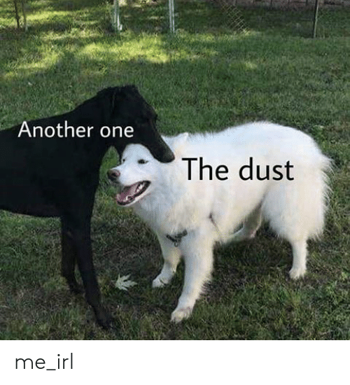 Another One, Irl, and Me IRL: Another one  The dust me_irl