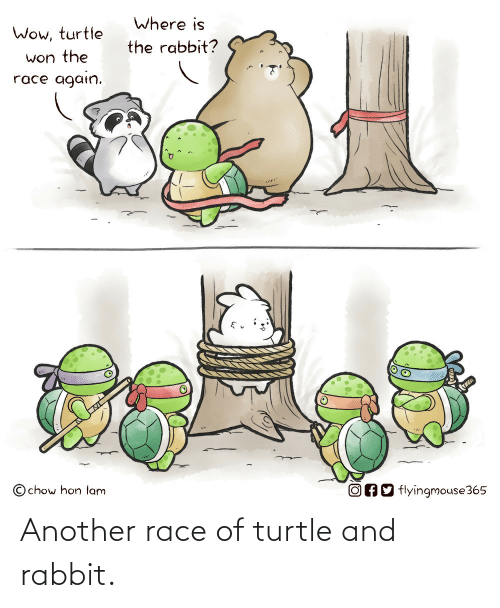 another: Another race of turtle and rabbit.