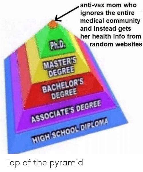 Community, School, and High School Diploma: anti-vax mom who  ignores the entire  medical community  and instead gets  her health info from  Ph.D  random websites  MASTER  DEGREE  BACHELOR'S  DEGREE  ASSOCIATE'S DEGREE  HIGH SCHOOL DIPLOMA Top of the pyramid