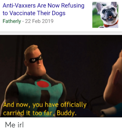 Dogs, Irl, and Me IRL: Anti-Vaxxers Are Now Refusing  to Vaccinate Their Dogs  Fatherly - 22 Feb 2019  nd now, you have officially  carrièd it too far Buddy. Me irl