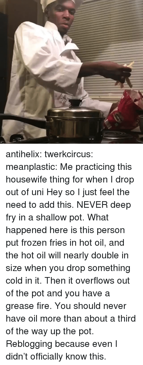 Fire, Frozen, and Tumblr: antihelix:  twerkcircus:   meanplastic:  Me practicing this housewife thing for when I drop out of uni  Hey so I just feel the need to add this. NEVER deep fry in a shallow pot. What happened here is this person put frozen fries in hot oil, and the hot oil will nearly double in size when you drop something cold in it. Then it overflows out of the pot and you have a grease fire. You should never have oil more than about a third of the way up the pot.    Reblogging because even I didn't officially know this.
