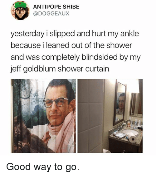 Funny, Shower, and Good: ANTIPOPE SHIBE  @DOGGEAUX  yesterday i slipped and hurt my ankle  because i leaned out of the shower  and was completely blindsided by my  jeff goldblum shower curtain Good way to go.