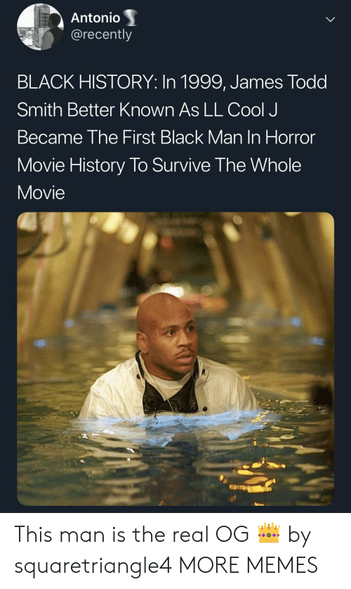 Dank, Memes, and Target: Antonio  @recently  BLACK HISTORY: In 1999, James Todd  Smith Better Known As LL Cool J  Became The First Black Man In Horror  Movie History To Survive The Whole  Movie This man is the real OG 👑 by squaretriangle4 MORE MEMES