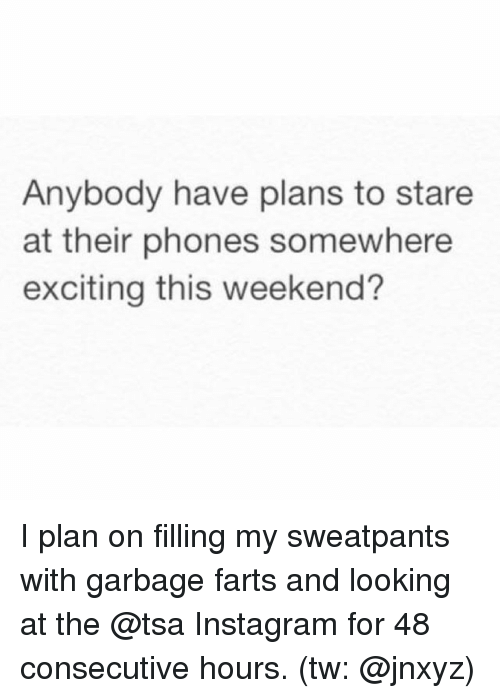 Instagram, Memes, and 🤖: Anybody have plans to stare  at their phones somewhere  exciting this weekend? I plan on filling my sweatpants with garbage farts and looking at the @tsa Instagram for 48 consecutive hours. (tw: @jnxyz)