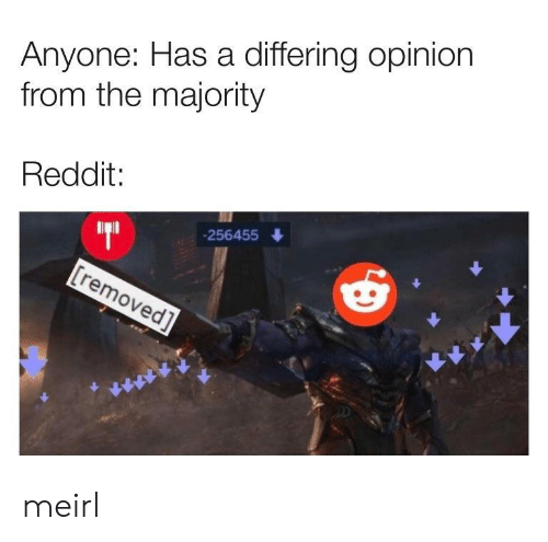 Reddit, MeIRL, and Anyone: Anyone: Has a differing opinion  from the majority  Reddit:  256455 meirl