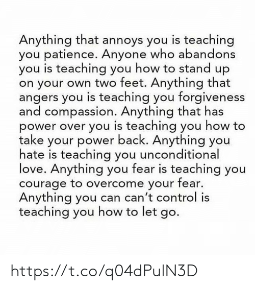 Love, Memes, and Control: Anything that annoys you is teaching  you patience. Anyone who abandons  you is teaching you how to stand up  on your own two feet. Anything that  angers you is teaching you forgiveness  and compassion. Anything that has  power over you is teaching you how to  take your power back. Anything you  hate is teaching you unconditional  love. Anything you fear is teaching you  courage to overcome your fear.  Anything you can can't control is  teaching you how to let go. https://t.co/q04dPulN3D