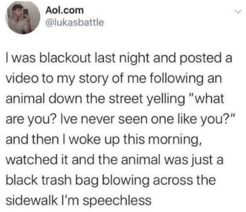 "Blowing: Aol.com  @lukasbattle  I was blackout last night and posted a  video to my story of me following an  animal down the street yelling ""what  are you? Ive never seen one like you?""  and then I woke up this morning,  watched it and the animal was just a  black trash bag blowing across the  sidewalk I'm speechless"