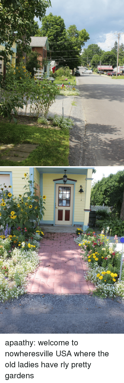 Tumblr, Blog, and Http: apaathy:  welcome to nowheresville USA where the old ladies have rly pretty gardens