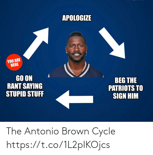 go on: APOLOGIZE  YOU ARE  HERE  GO ON  RANT SAYING  STUPID STUFF  BEG THE  PATRIOTS TO  SIGN HIM The Antonio Brown Cycle https://t.co/1L2pIKOjcs
