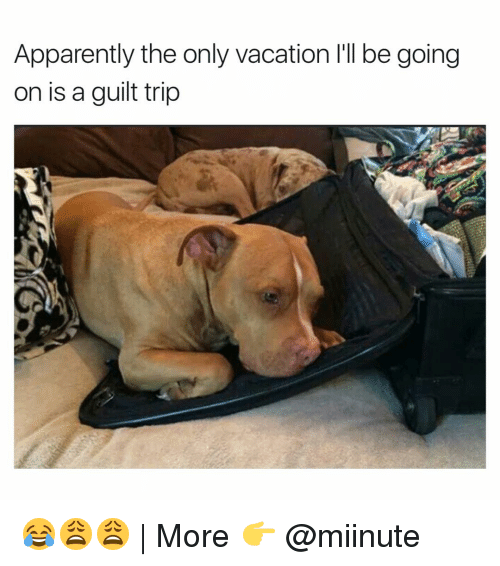 Funny, Vacation, and Trip: Apparently the only vacation l'll be going  on is a guilt trip 😂😩😩 | More 👉 @miinute