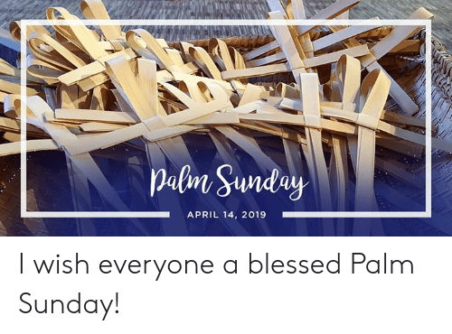 Blessed, Sunday, and April: APRIL 14, 2019 I wish everyone a blessed Palm Sunday!