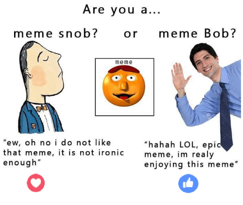 "Ironic, Lol, and Meme: Are you a...  meme snob?  or meme Bob?  meme  hahah LOL, epic  ""ew, oh no i do not like  that meme, it is not ironic  meme, im realy  enough""  enjoying this meme"""