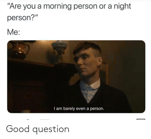 "Good Question: ""Are you a morning person or a night  person?""  Me:  I am barely  even a person. Good question"