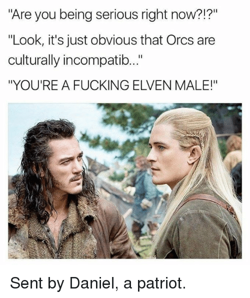 "Fucking, Memes, and 🤖: Are you being serious right now?!?""  ""Look, it's just obvious that Orcs are  culturally incompatib..""  ""YOU'RE A FUCKING ELVEN MALE!"" Sent by Daniel, a patriot."