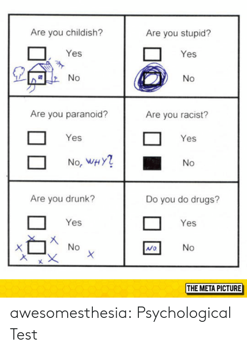 Drugs, Drunk, and Tumblr: Are you childish?  Are you stupid?  Yes  Yes  Are you paranoid?  Are you racist?  Yes  Yes  No, WHY  No  Are you drunk?  Do you do drugs?  Yes  Yes  Mo  THE META PICTURE awesomesthesia:  Psychological Test