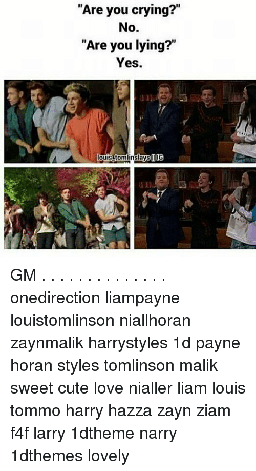 "Crying, Cute, and Love: Are you crying?  No.  ""Are you lying?""  Yes  days OOG GM . . . . . . . . . . . . . . onedirection liampayne louistomlinson niallhoran zaynmalik harrystyles 1d payne horan styles tomlinson malik sweet cute love nialler liam louis tommo harry hazza zayn ziam f4f larry 1dtheme narry 1dthemes lovely"