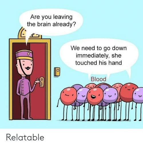 Brain, Relatable, and Blood: Are you leaving  the brain already?  We need to go down  immediately, she  touched his hand  0  Blood Relatable