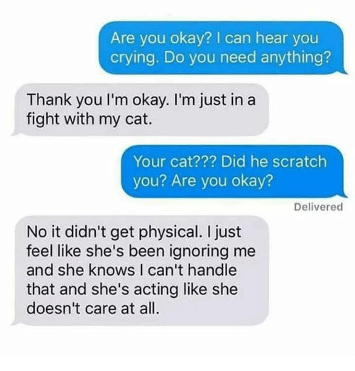 Crying, Memes, and She Knows: Are you okay? I can hear you  crying. Do you need anything?  Thank you I'm okay. I'm just in a  fight with my cat.  Your cat??? Did he scratch  you? Are you okay?  Delivered  No it didn't get physical. I just  feel like she's been ignoring me  and she knows I can't handle  that and she's acting like she  doesn't care at all