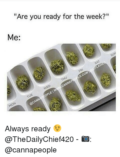 "Memes, 🤖, and You: ""Are you ready for the week?""  Me:  op Always ready 😉 @TheDailyChief420 - 📷: @cannapeople"