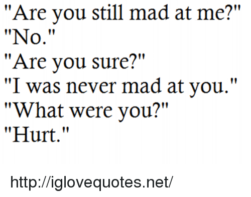 """Http, Mad, and Never: """"Are you still mad at me?""""  """"No.""""  """"Are vou sure?""""  """"I was never mad at you.""""  """"What were you?""""  """"Hurt."""" http://iglovequotes.net/"""