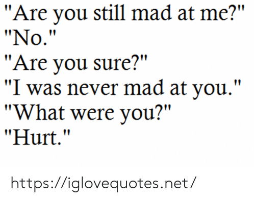 """Mad, Never, and Net: """"Are you still mad at me?""""  """"No.""""  """"Are you sure?""""  """"I was never mad at you.""""  """"What were you?""""  """"Hurt."""" https://iglovequotes.net/"""