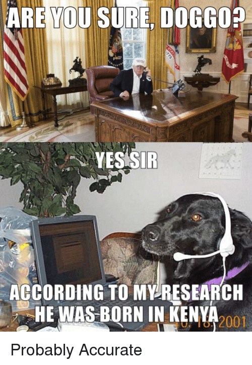Politics, Doggo, and Yes: ARE YOU SURE, DOGGO  YES SIR  AGCORDING TO MV-RESEARCH  HE WAS BORN IN KENYA  u, ló, 2001
