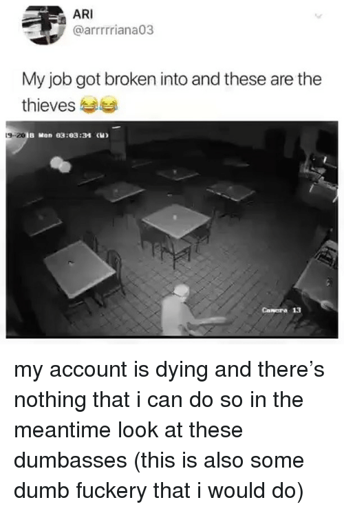 Dumb, Girl Memes, and Got: ARI  @arrrrriana03  My job got broken into and these are the  thieves  9-20  B Mon 03:03:34 (H)  Canora 13 my account is dying and there's nothing that i can do so in the meantime look at these dumbasses (this is also some dumb fuckery that i would do)