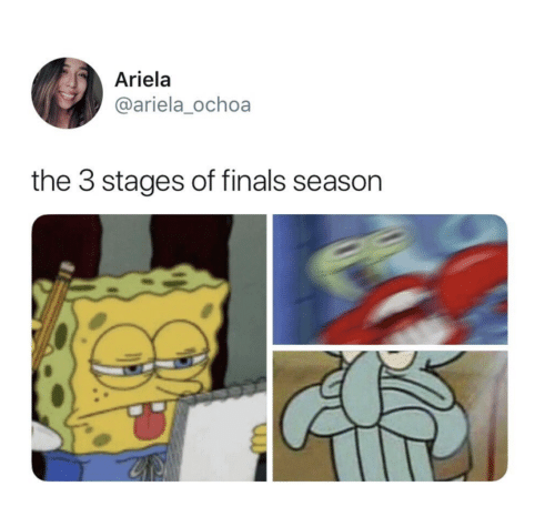 Finals, Ochoa, and Season: Ariela  @ariela_ochoa  the 3 stages of finals season
