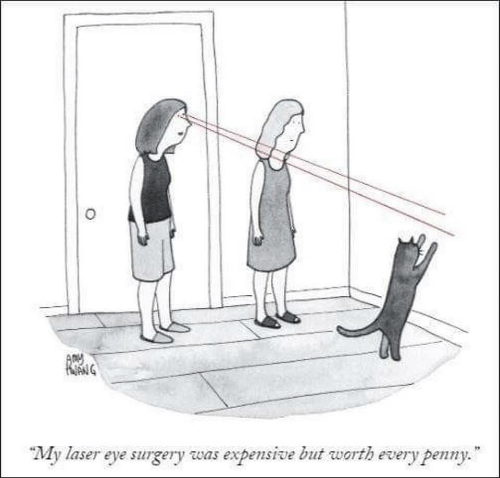 Eye, Laser, and Arm: ARM  My laser eye surgery was expensive but warth every peny.