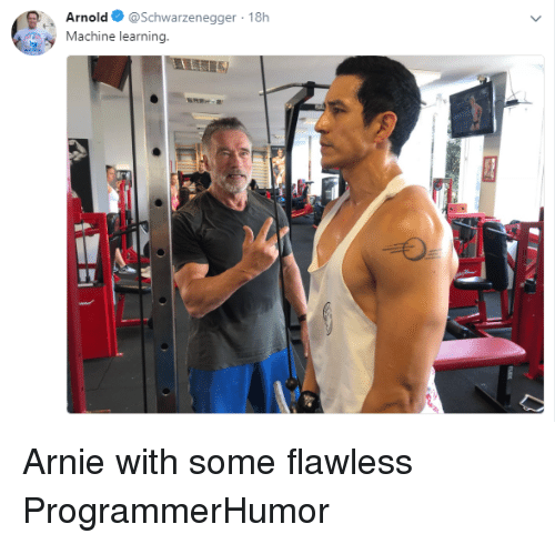 schwarzenegger: Arnold @Schwarzenegger 18h  Machine learning. Arnie with some flawless ProgrammerHumor